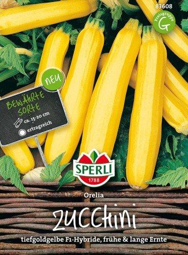 Zucchini Orelia F1