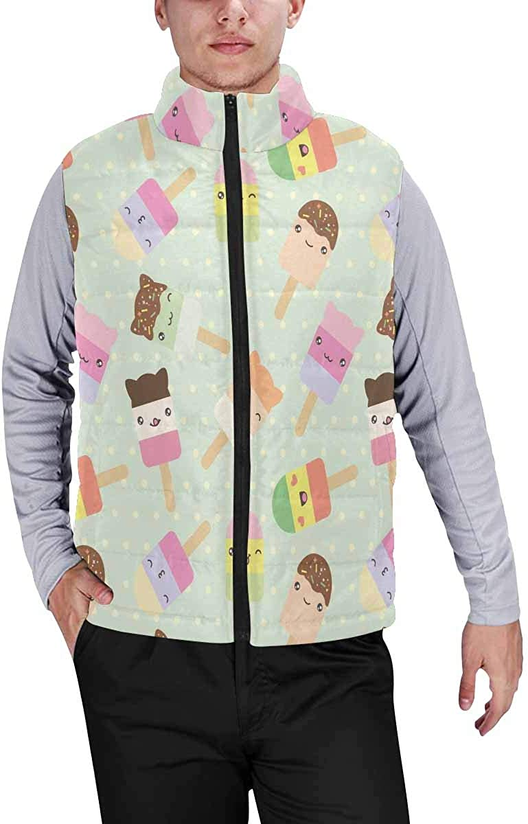 InterestPrint Men's Outdoor Casual Stand Collar Sleeveless Jacket Hummingbirds with Spring Flowers