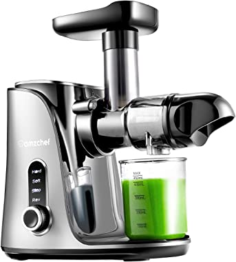 Juicer Machines,AMZCHEF Slow Masticating Juicer Extractor, Cold Press Juicer with Two Speed Modes, 2 Travel bottles(500ML),LE