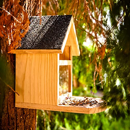 Skojig© wetterfeste Futterstelle für Eichhörnchen aus Naturholz - Futterstelle | Futterhaus zum füttern von widllebenden Eichhörnchen