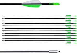"""CUPID 31"""" Training Arrows-Archery Practice Target Arrows with Durable Shaft Blunt Tip for Kids Youth or Beginners on Recurve Bow Long Bow"""