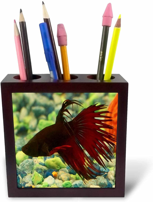 3dRosa PH 14145 _ 1 Betta Fish-Tile Stifthalter, 12,7 cm B004SF3AS2   Langfristiger Ruf