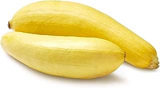 Yellow Squash, 1.5 lb