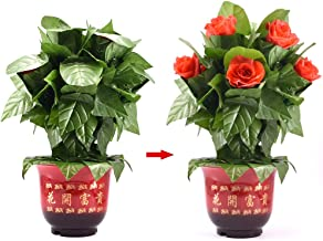 Doowops Blooming Rose Bush - Remote Control (10 Flowers,Battery Version) Magic Tricks Flower Appearing Stage Party Wedding Props Comedy