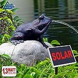 AMUR GARTENBRUNNEN SOLAR BRUNNEN SOLARTEICHPUMPE SOLAR SPRINGBRUNNEN SOLAR WASSERSPIEL MÄRCHEN-Frosch ZIERBRUNNEN Frosch VOGELBAD SOLAR PUMPE Solar Teichpumpe SOLAR Set für Garten TEICH...