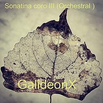 Sonatina coro III (Orchestral)