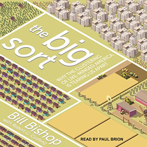 The Big Sort audiobook cover art