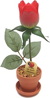 5th Year Wedding Anniversary Gift, Potted Wood Desk Rose, Perfect Present for Wife or Husband