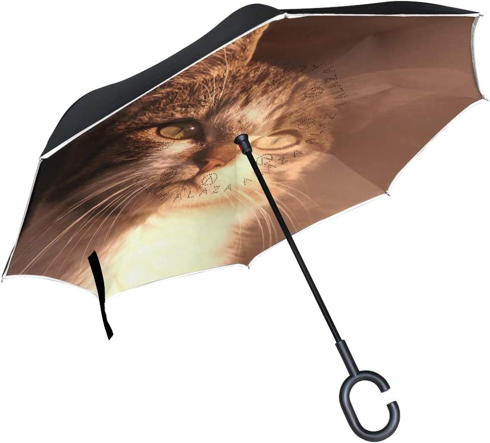 SLHFPX Reverse Same day Las Vegas Mall shipping Umbrella Autumn Fall Windproof Inverted Um Leaves