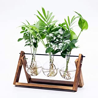 Best glass vase with metal stand Reviews