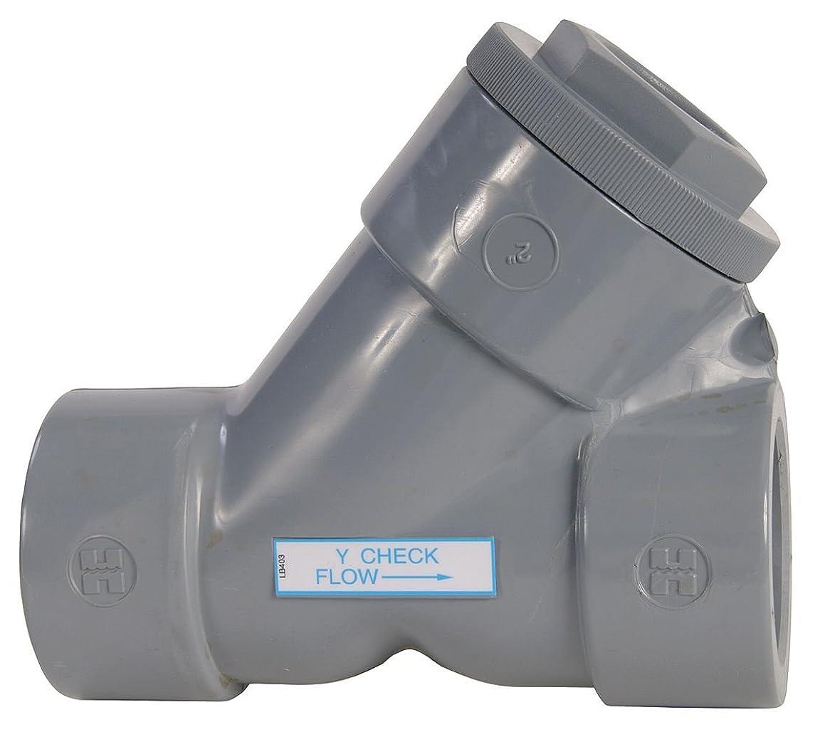 Hayward YC20050SE Series YC Y-Check Valve, Socket End, CPVC with EPDM Seals, 1/2