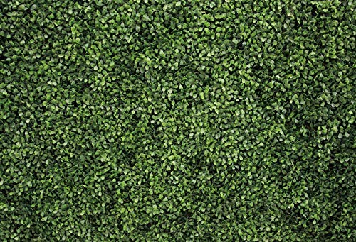Nature Grass Wall Photography Backdrop,Yeele 10x8ft Spring Green Leaves Greenery Backdrop,Birthday Wedding Party Banner Outdoorsy Theme Home Decor Newborn Baby Shower Seamless Photo Shoot Props