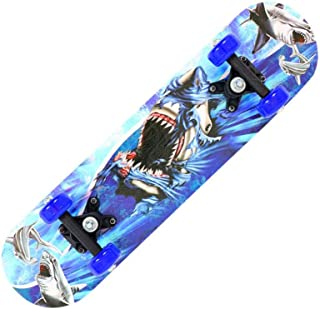 17 Inch Kids Skateboard Deck, Complete Skateboard, Maple Wood Standard Skateboard for Kids Teens Beginners