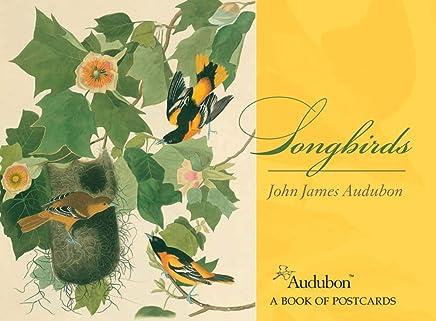 Songbirds John James Audubon Postcard Book Aa579
