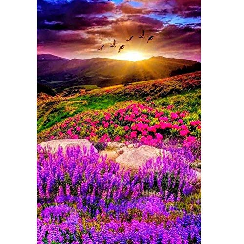 Diamond Painting Accessories,Lavender in The Sunset,Dimond Paintings for Adults,Wall Decor Stress and Anxiety Relief,Killing Time.(Canvas Size: 11.8 x 15.75 in)