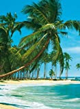 Fototapete, South Sea, 4-teilig - 183x254cm, Motivtapete, Bildtapete, Karibik, Südsee, Malediven, Palmenstrand, Palmen, Strand, Strandmotiv - Wall Mural, gestochen scharfe XXL-Ansicht...