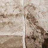 VIMODA Teppich Modern Stein Mauer Optik in Beige Braun, Maße:120 x 170 cm - 3