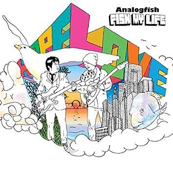 Fish My Life