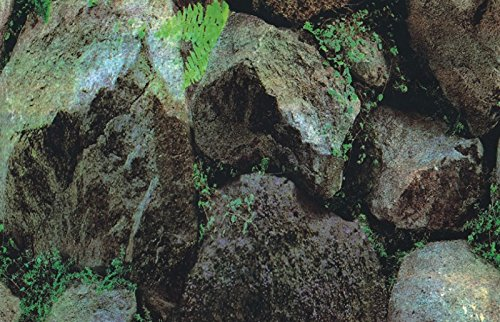 Marty KB05 1112 dubbelzijdig behang - planten/rotsen, 49 cm
