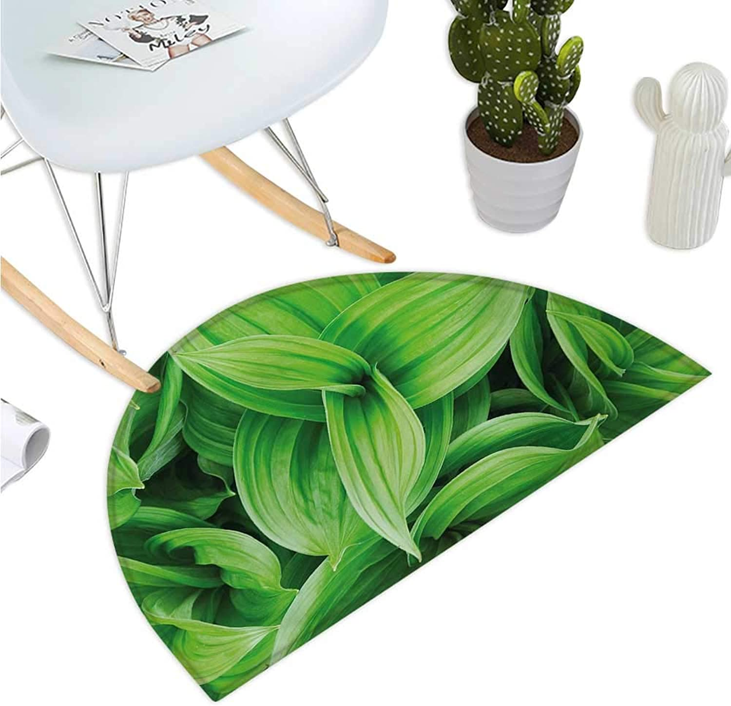 Plant Semicircle Doormat Close-up Beautiful Tropic Foliage Pattern Helleborus Leaves Natural Herbs Wildflowers Entry Door Mat H 47.2  xD 70.8  Lime Green