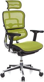 hjh OFFICE 652140 Silla de Oficina ERGOHUMAN Tejido de Malla Verde, amplios ajustes, sólido Aluminio Pulido, ergonómico