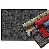 casa pura Premium Fußmatte | Sauberlaufmatte für Eingangsbereiche | Fußabtreter mit Testnote 1,7 | Schmutzfangmatte in 8 Größen als Türvorleger innen und außen | rot - meliert | 60x90cm