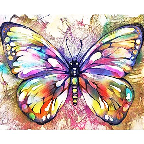 DIY Paint by Numbers for Adults, Hlison Butterfly Acrylic Paint by Numbers, Easy Paint by Numbers for Beginner Kids, Watercolor Paint by Number Decoration Gift 16 x 20 Inch