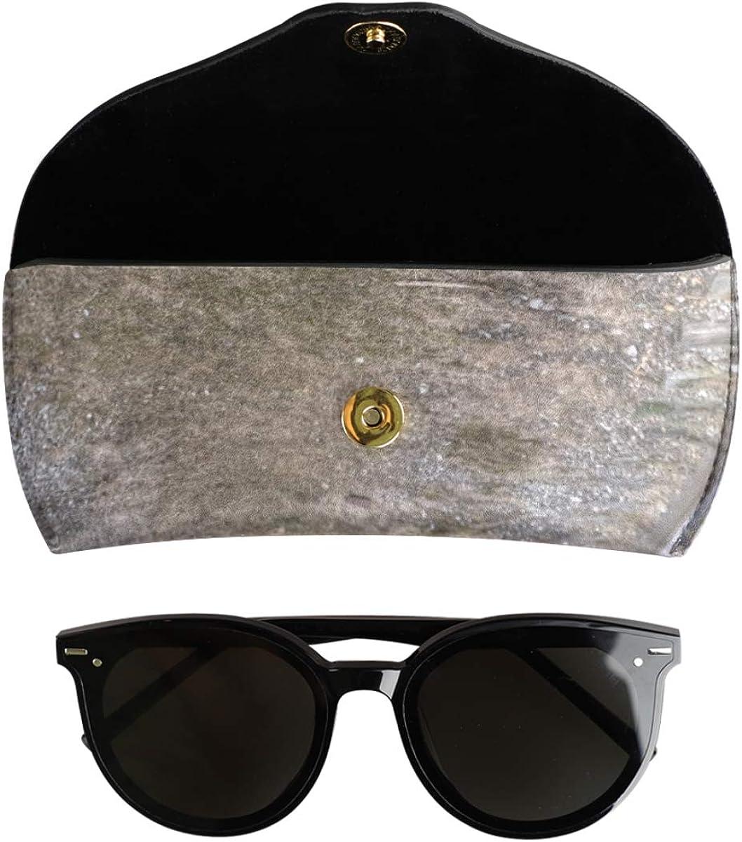 present Goggles Bag Sunglasses Case Eyeglasses Pouch Old Engine Train Portable PU Leather Multiuse