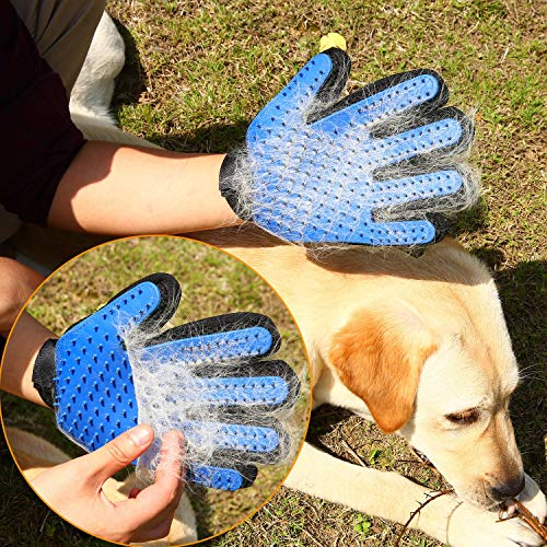 Product Image 9: PICKVILL Efficient Pet Hair Remover Mitt Enhanced 5 Finger Design Gentle Deshedding Brush Gloves for Dogs with Long and Short Fur (Multicolour)