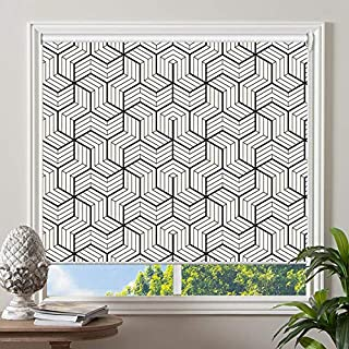 PASSENGER PIGEON Blackout Window Shades, Black in White Patterned Premium Thermal Insulated UV Protection Custom Roller Blinds, 20