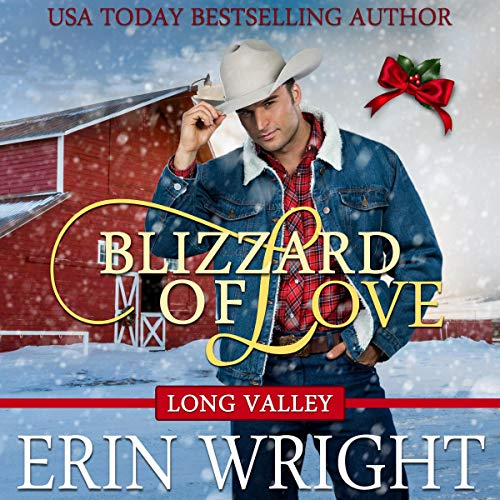 Blizzard of Love Audiobook By Erin Wright cover art