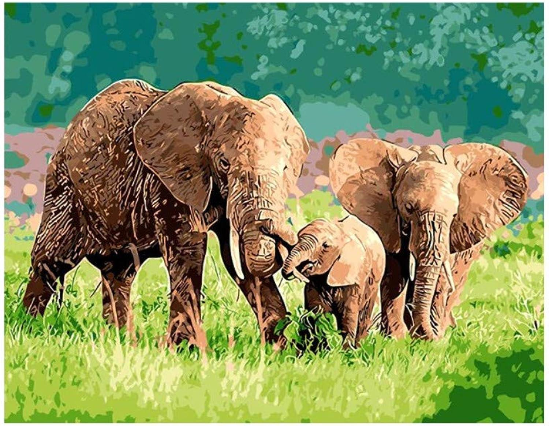 Yyboo DIY Malen Nach Zahlen Digitale Leinwand Ölgemälde Geschenk Erwachsene Kinder Kits Home Decorators - Elefant (Holzrahmen) B07PGFZ1VP | Erste Gruppe von Kunden