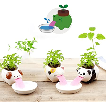3 Pack Cute Animal Self Watering Planter Pots, Cute Tongue Animal Planters Ceramic Plant Pot for Indoor Outdoor Decoration Home Office Decor Window Garden Gifts