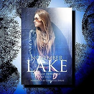 November Lake: Teenage Detective audiobook cover art