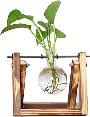1ae2399b3d5 Desktop Glass Planter Bulb Vase with Retro Solid Wooden Stand and Metal  Swivel Holder for Hydroponics