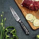 PAUDIN Damast Messer Allzweckmesser 13cm - scharfe Japanisches AU10 Küchenmesser mit ergonomischem Micarta-Griff - 4