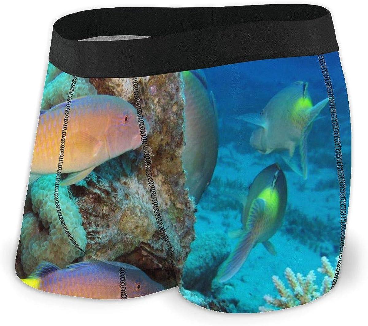 Randolph Wordsworth Mens Boxer Briefs Cute Funny Coral Goat Fish Boys Trunks Underwear Short Leg Breathable Man