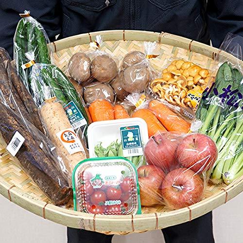 国産 おまかせ 野菜セット B 果物1品+野菜9種類以上 野菜 旬野菜 季節野菜 人気 野菜詰め合わせ 定期 お取り寄せ