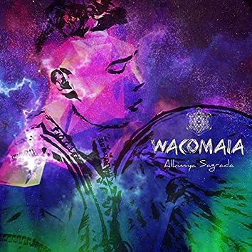 Wacomaia