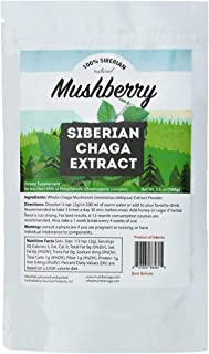 Mushberry Siberian Chaga Mushroom Organic Extract Powder 3.5 oz 100 g | Powerful Immune & Energy Booster | Truly Wild Harvest Superfood | Powerful Antioxidant | Improves Digestion | Highest ORAC Value