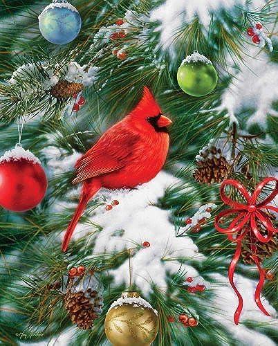 minoristas en línea Nature's Ornament by by by Springbok Puzzles  Envío 100% gratuito