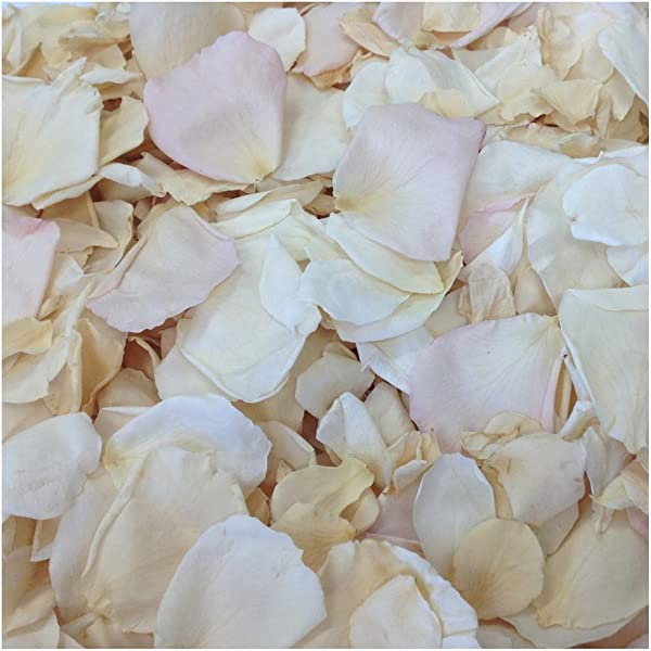 Rose Petal Blend Shabby Chic 600 Real Rose Petals Wedding Petals From Flyboy Naturals 15 Cups