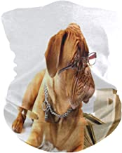 LIUBT Bandana gezichtsmasker stofbescherming buiten Sport hoofd Wrap zon UV Motorfiets Grappige Pug Hond Puppy Gezicht Sja...