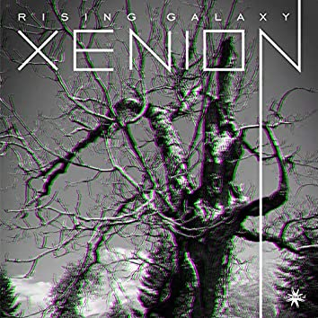 Xenion