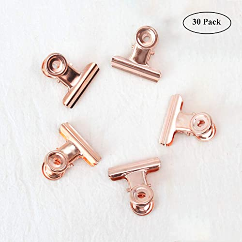 Small Bulldog Paper Clips, Coideal 30 Pack 1 Inch Metal Binder Clips File Paper Money Clamps for Tags Bags, Shops, Office and Home Kitchen (Rose Gold, 22mm)