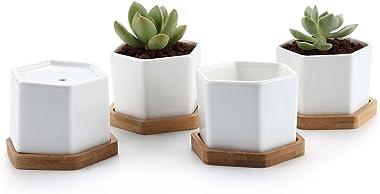 T4U 7CM Pot de Succulent en Céramique Hexagone avec Plateau en Bambou Lot de 4, Cactus Plante Planteur Cache Pot Jardinière C