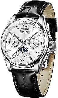 OUPINKE Swiss Brand Men Automatic Watch Luxury Business Mechanical Leather Strap Multi Calendar Waterproof Moon Phase Wristwatch