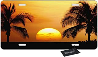 WONDERTIFY License Plate Tropical Palm Trees Scene Sunset Decorative Car Front License Plate,Vanity Tag,Metal Car Plate,Aluminum Novelty License Plate for Men/Women/Boy/Girls Car,6 X 12 Inch