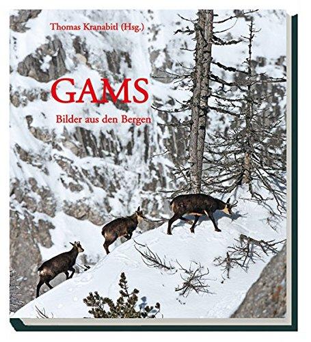 Gams: Bilder aus den Bergen