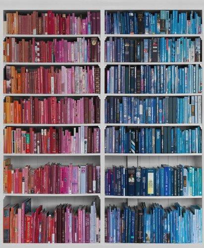 P131502-4 Wandbild Vlies-Tapete Bücherwand 220x180cm Foto Library Rot Blau